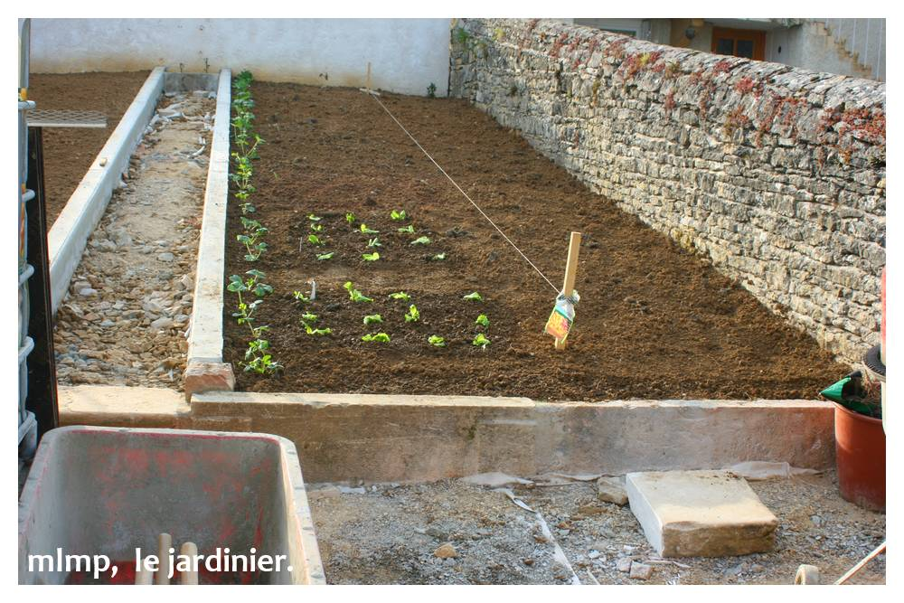 Awesome Bordure Jardin Potager Pictures - Design Trends 2017 ...